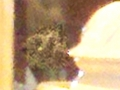 large enhanced crop showing  very clearly to me 3 spirit heads merged together to form one image