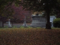 ORIGINAL PHOTO AT CEDAR HILL CEMETERY CAME OUT TO DARK TO SEE WHAT IS THERE