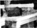 BLACK AND WHITE ASPECT SHOWING SPIRITS